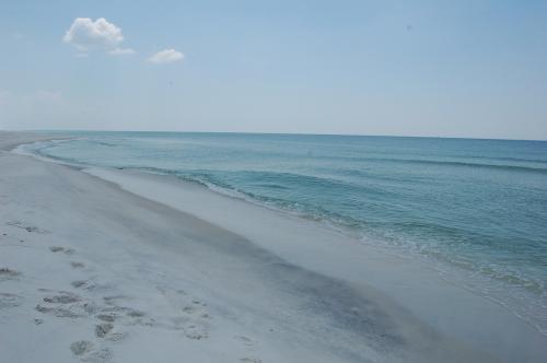 ocean and shore