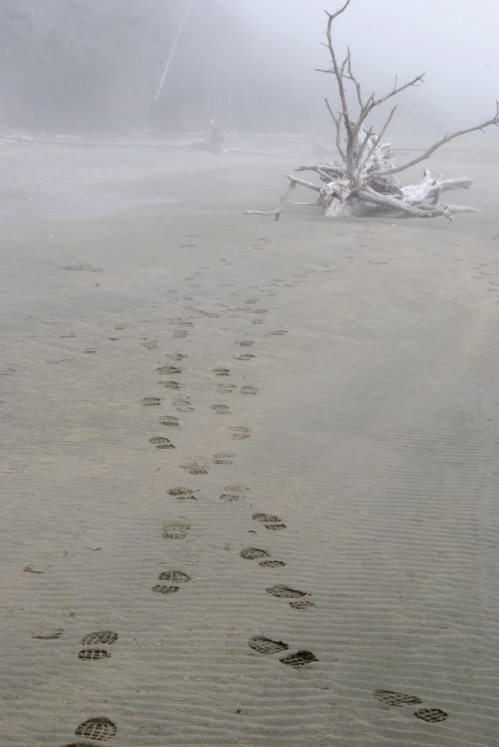 Foggy footsteps