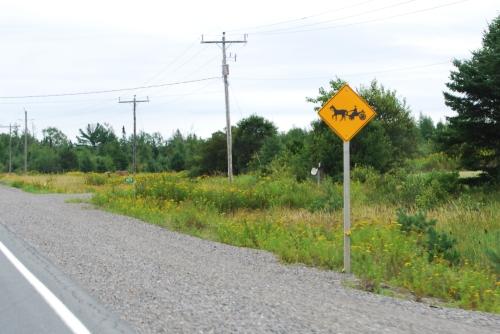 Mennonite crossing