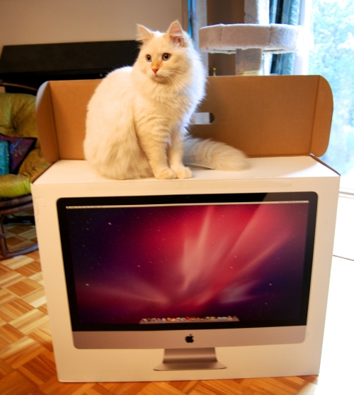 Hobbes with the iMac