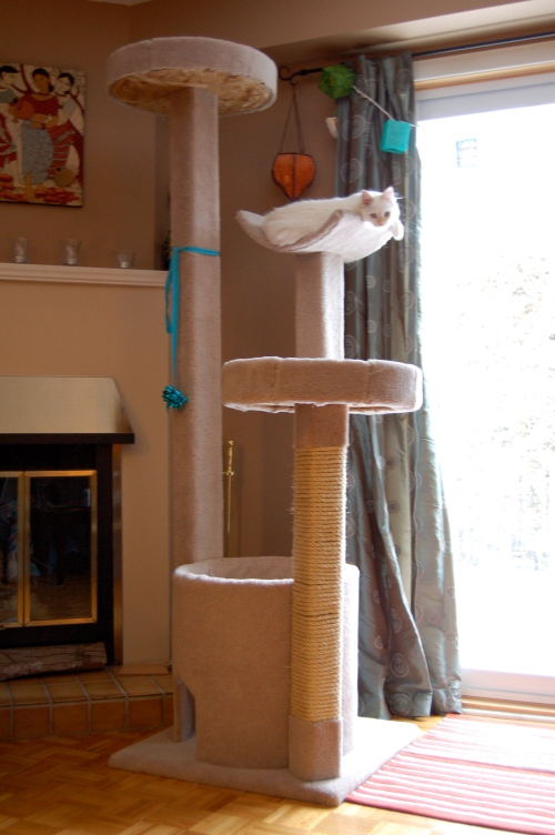 Hobbes' cat tree